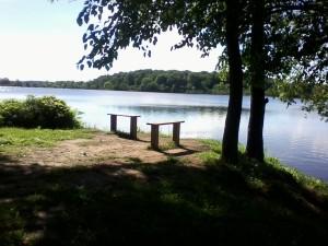 Lime Lake 5