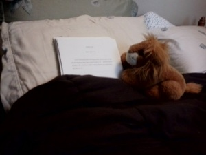 Manuscript being watched over by my children's stuffed lion, Aslan.
