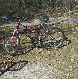 my-bike-cropped